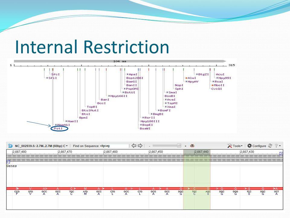 Internal Restriction