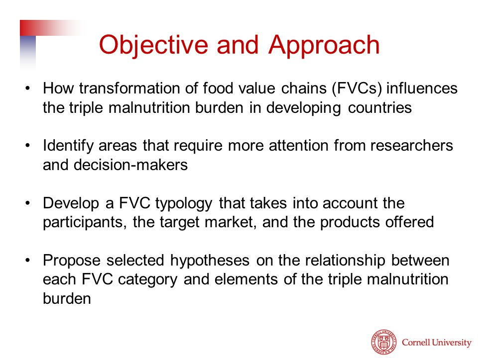How transformation of food value chains (FVCs) influences the triple malnutrition burden in developing countries Identify areas that require more attention from researchers and decision-makers Develop a FVC typology that takes into account the participants, the target market, and the products offered Propose selected hypotheses on the relationship between each FVC category and elements of the triple malnutrition burden Objective and Approach