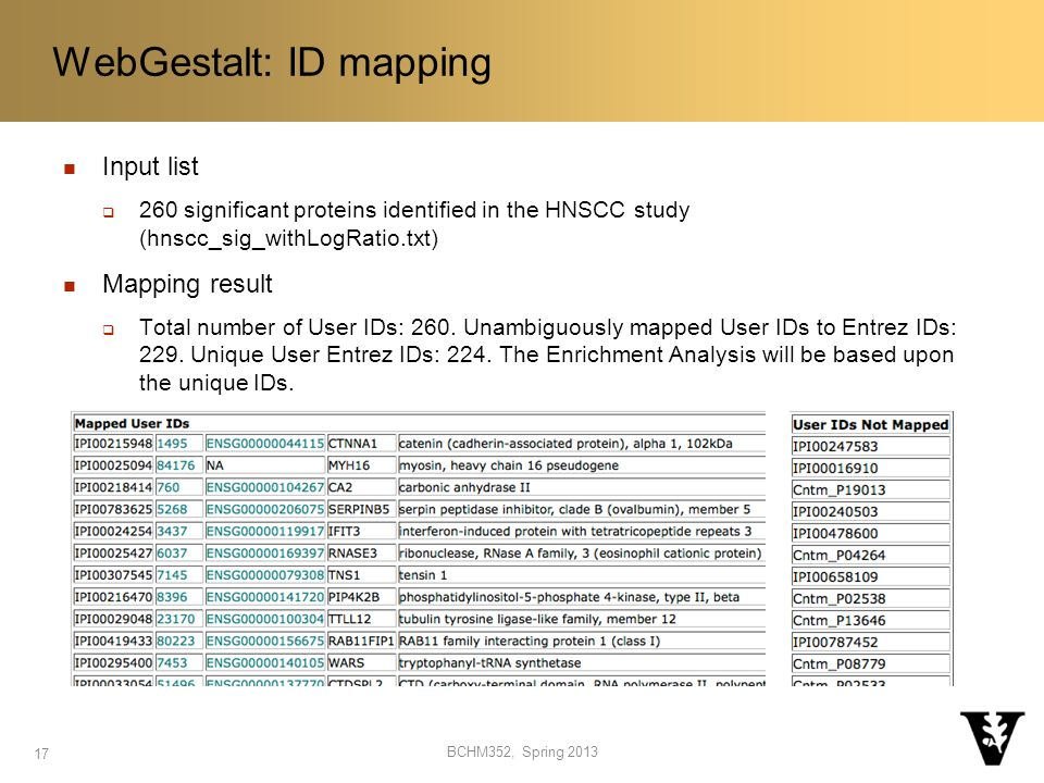 Input list  260 significant proteins identified in the HNSCC study (hnscc_sig_withLogRatio.txt) Mapping result  Total number of User IDs: 260.