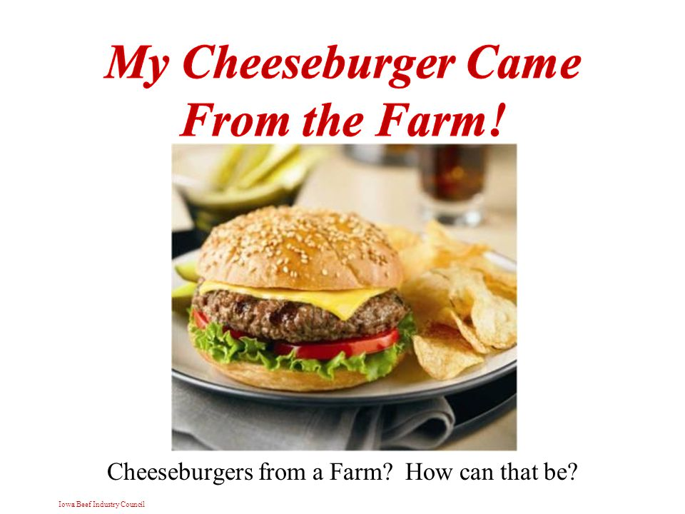 Iowa Beef Industry Council Cheeseburgers from a Farm How can that be