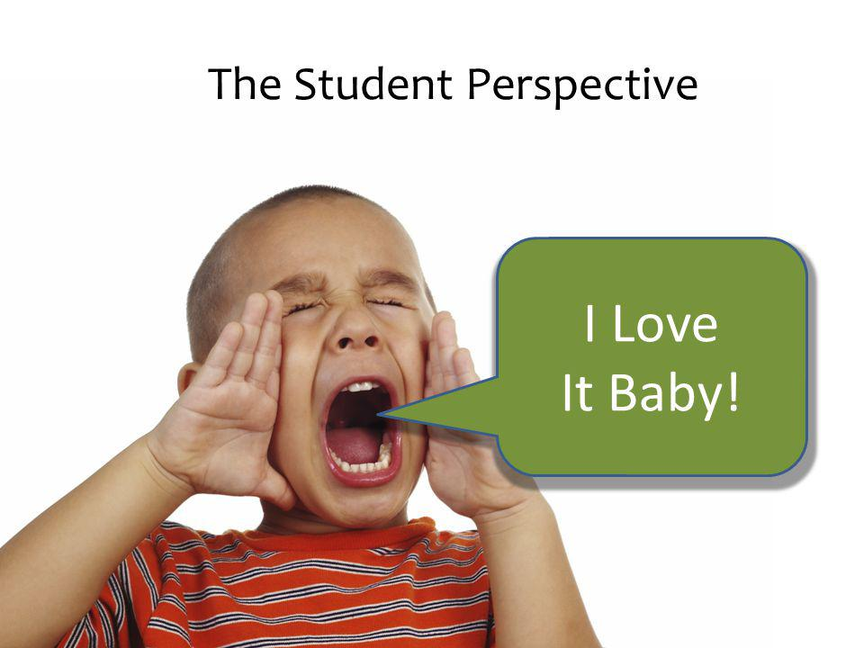 The Student Perspective What the Students are Saying I Love It Baby!