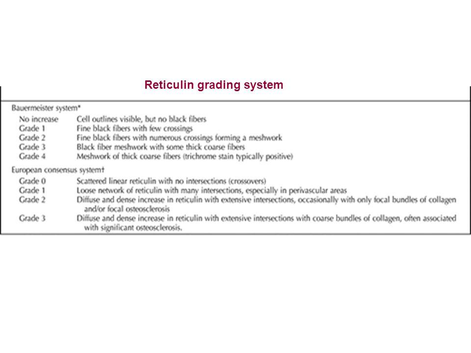 Reticulin grading system