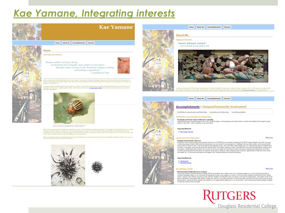 Kae Yamane, Integrating interests