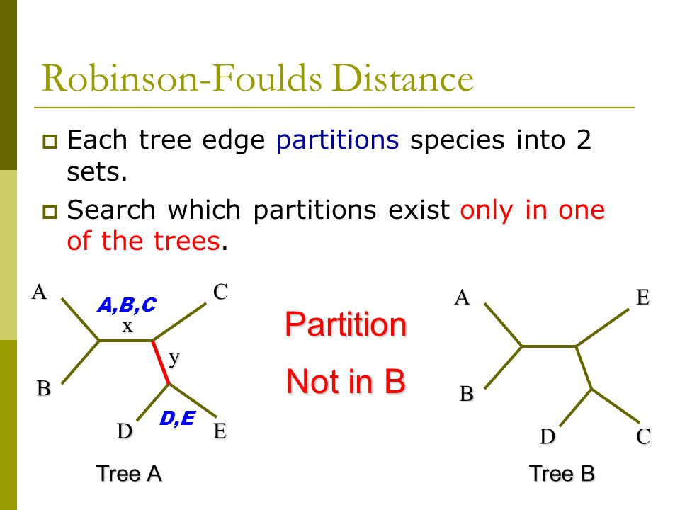 A B C DE A B E DC Tree A Tree B D,E A,B,C Robinson-Foulds Distance x y Partition Not in B  Each tree edge partitions species into 2 sets.