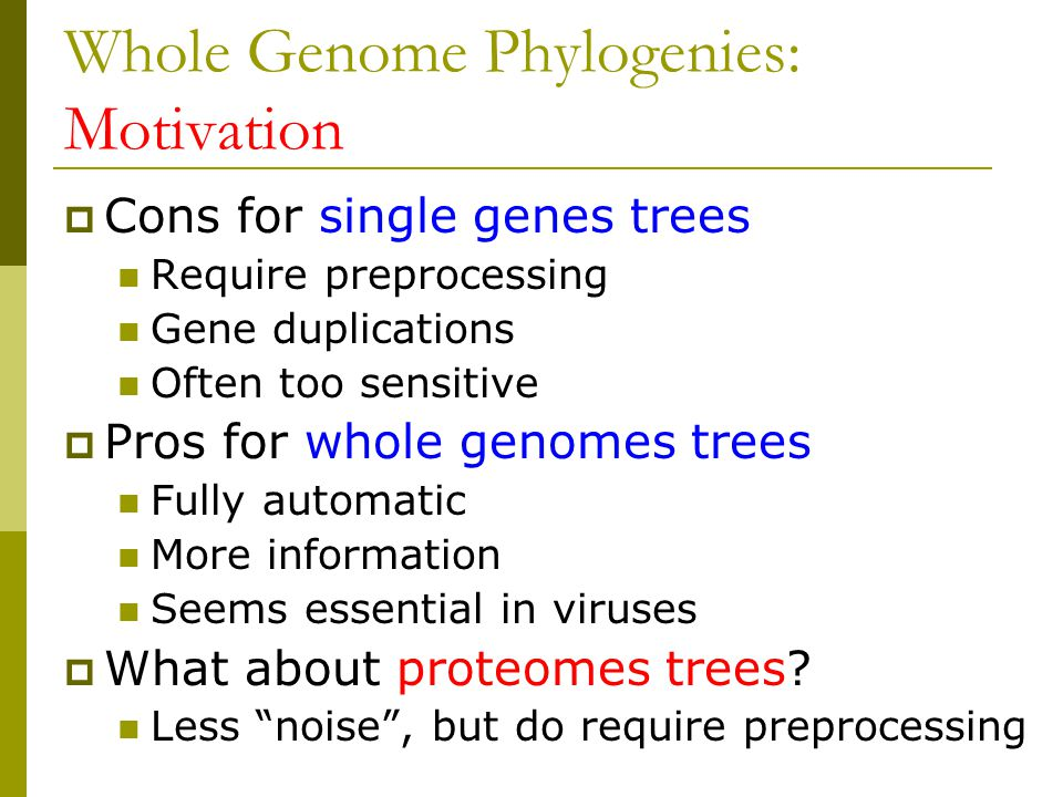 Whole Genome Phylogenies: Motivation  Cons for single genes trees Require preprocessing Gene duplications Often too sensitive  Pros for whole genomes trees Fully automatic More information Seems essential in viruses  What about proteomes trees.