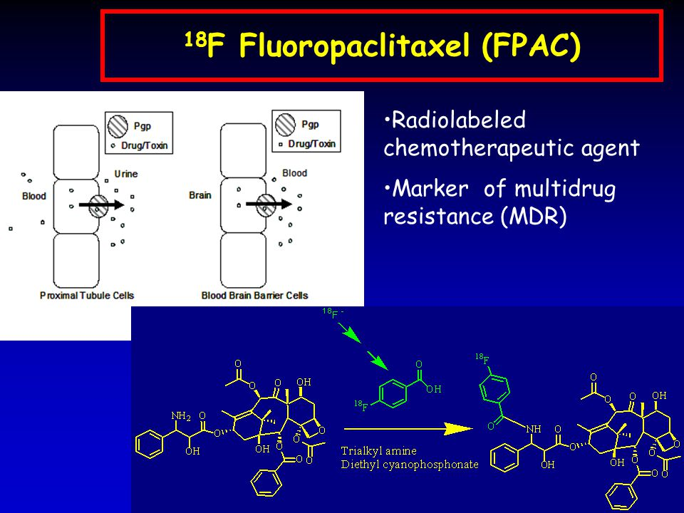 18 F Fluoropaclitaxel (FPAC) Radiolabeled chemotherapeutic agent Marker of multidrug resistance (MDR)