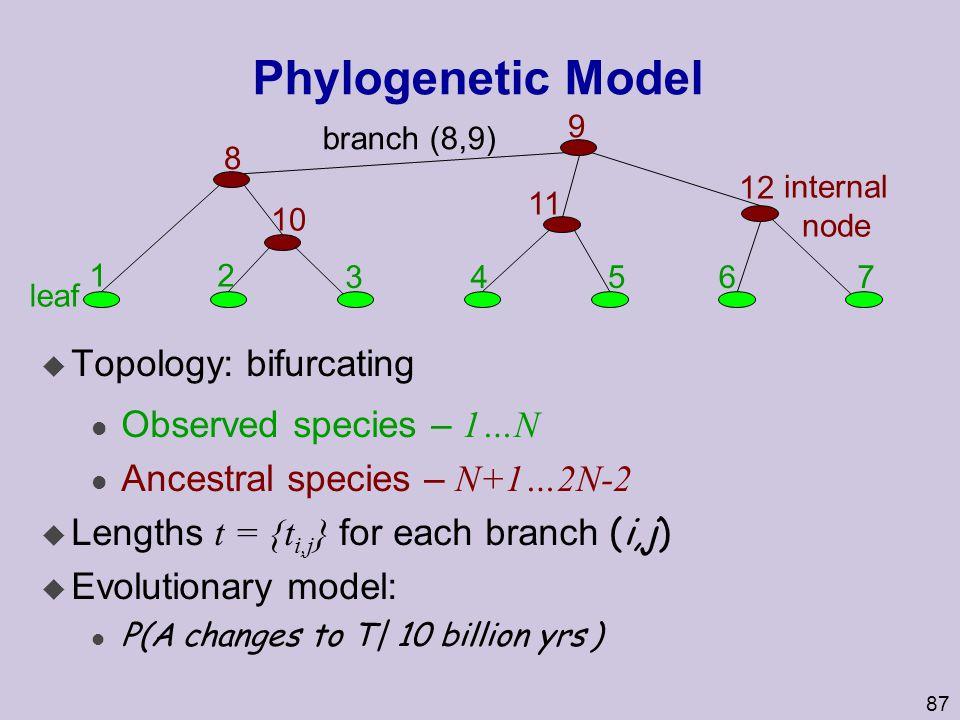 87 Phylogenetic Model u Topology: bifurcating Observed species – 1…N Ancestral species – N+1…2N-2  Lengths t = {t i,j } for each branch (i,j) u Evolutionary model: l P(A changes to T| 10 billion yrs ) internal node 12 34567 8 12 10 11 9 branch (8,9) leaf