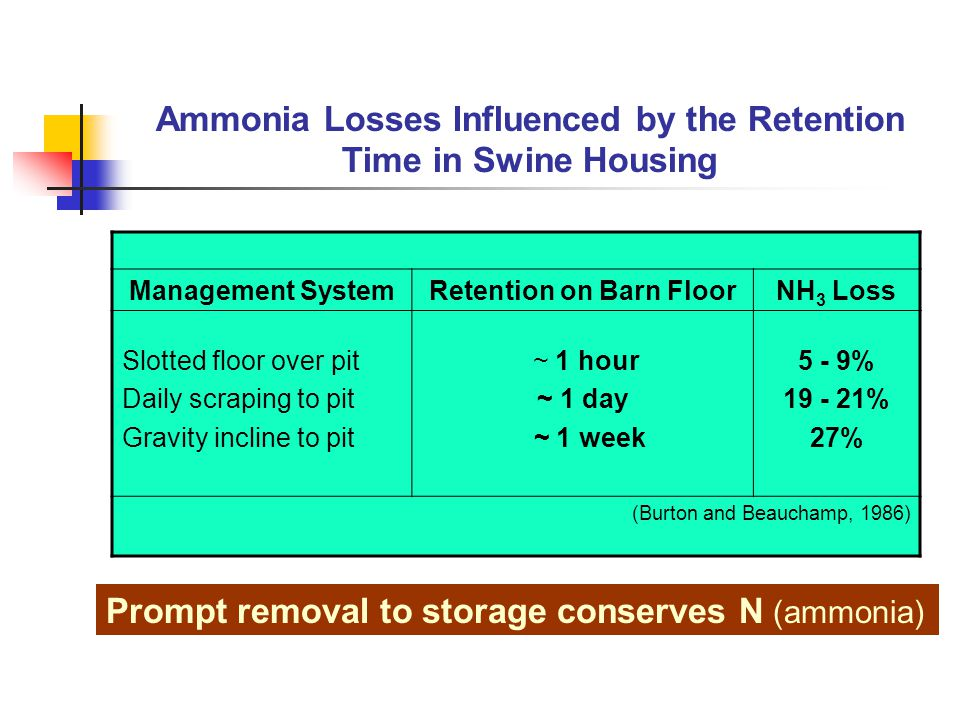 Ammonia Losses Influenced by the Retention Time in Swine Housing Management SystemRetention on Barn FloorNH 3 Loss Slotted floor over pit Daily scraping to pit Gravity incline to pit ~ 1 hour ~ 1 day ~ 1 week 5 - 9% % 27% (Burton and Beauchamp, 1986) Prompt removal to storage conserves N (ammonia)