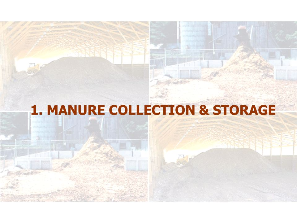 Manure Collection & Storage to Minimize GHG Emissions BENEFITS  Minimize odour production (NH 3, VOCs)  Minimize ammonia losses (toxic substance – CEPA)  Improve air quality in barn – healthier for hogs and for humans..