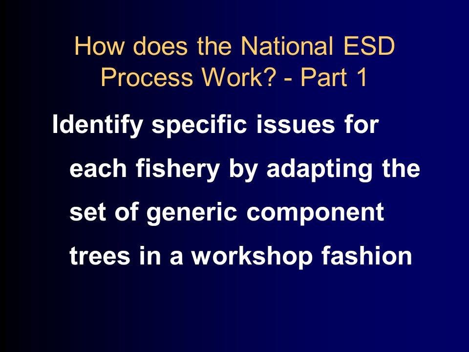 How does the National ESD Process Work.