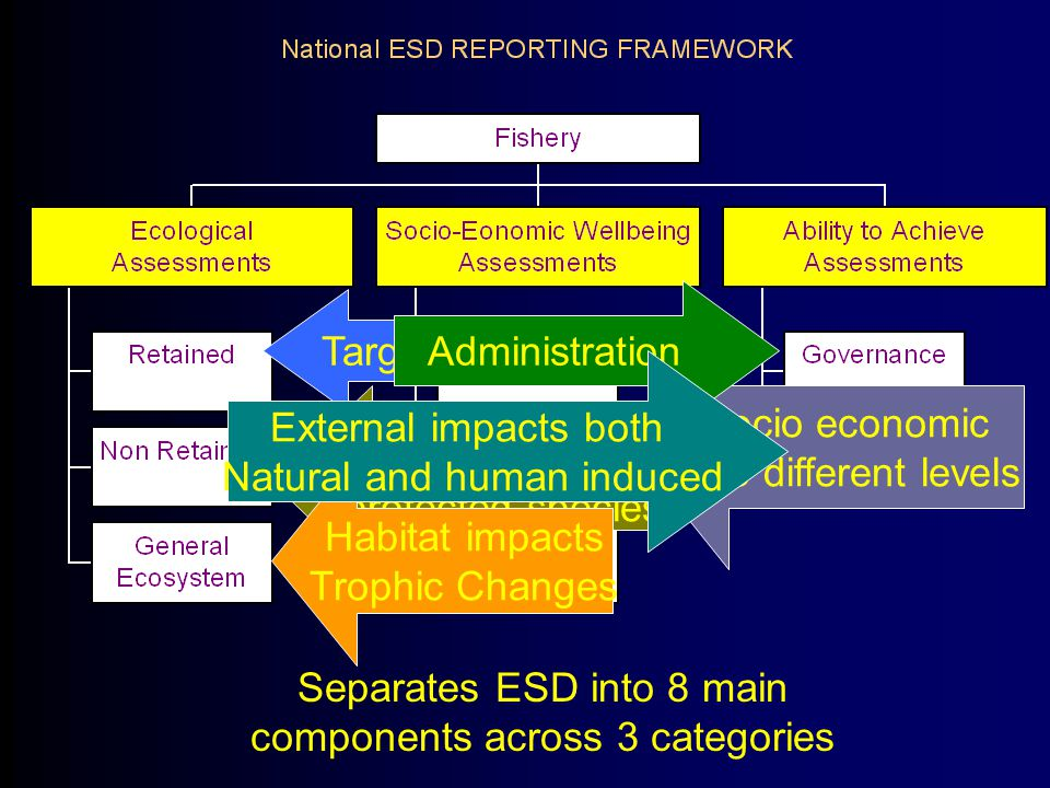 Separates ESD into 8 main components across 3 categories Target Species By catch and protected species Habitat impacts Trophic Changes Socio economic at 3 different levels Administration External impacts both Natural and human induced