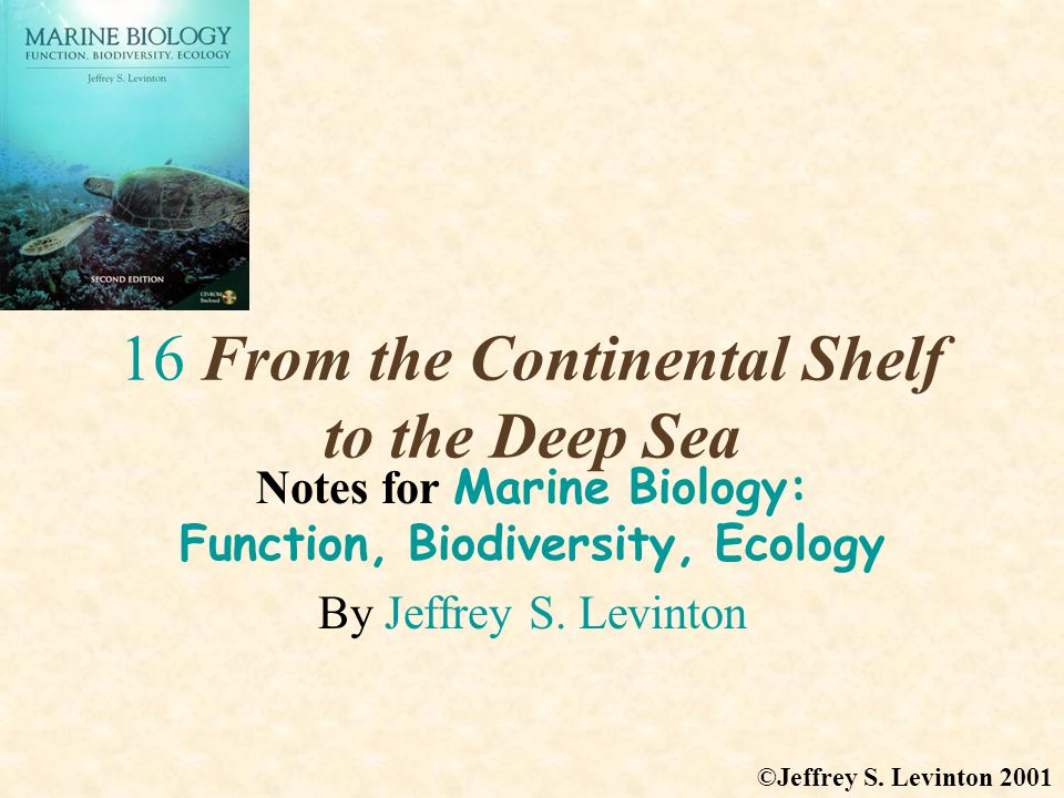 16 From the Continental Shelf to the Deep Sea Notes for Marine Biology: Function, Biodiversity, Ecology By Jeffrey S.