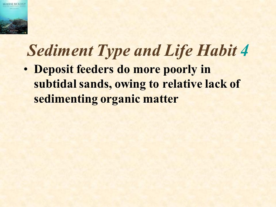 Sediment Type and Life Habit 4 Deposit feeders do more poorly in subtidal sands, owing to relative lack of sedimenting organic matter