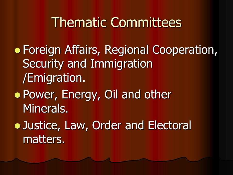 Thematic Committees Foreign Affairs, Regional Cooperation, Security and Immigration /Emigration.