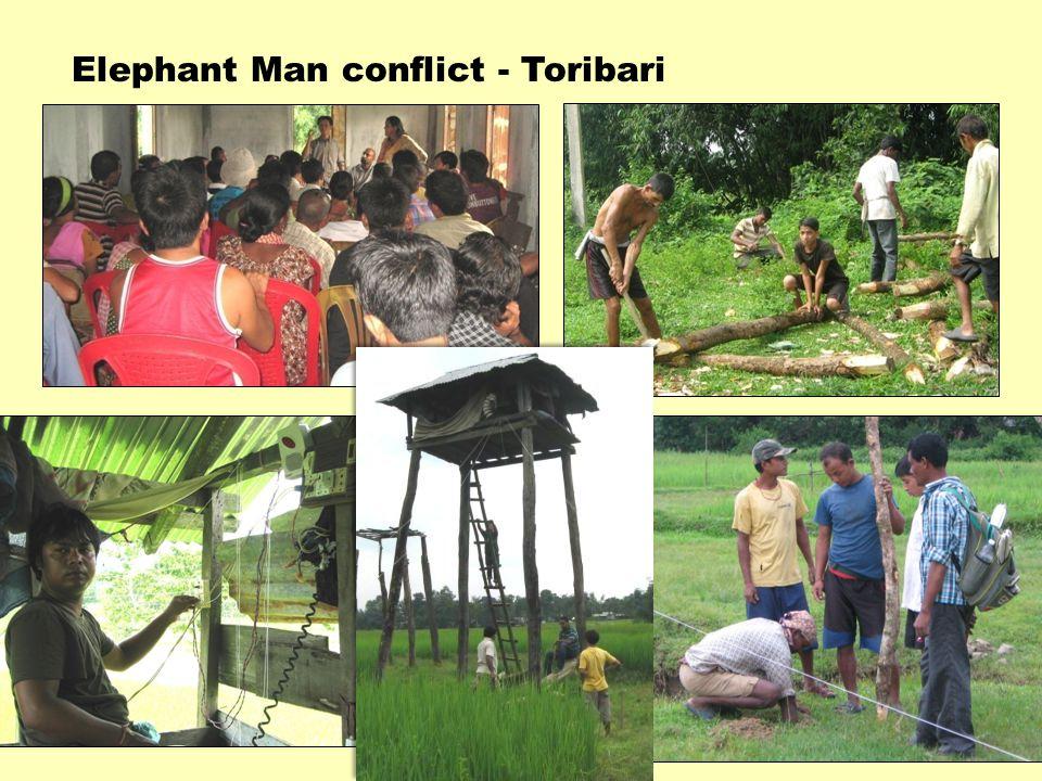 Elephant Man conflict - Toribari
