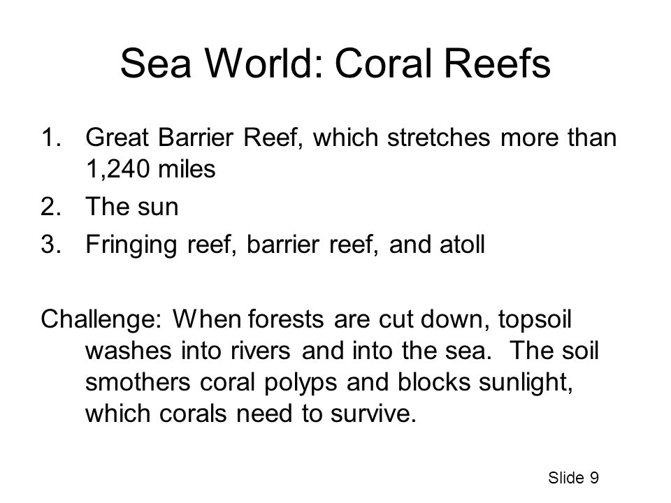 Sea World: Coral Reefs 1.Great Barrier Reef, which stretches more than 1,240 miles 2.The sun 3.Fringing reef, barrier reef, and atoll Challenge: When forests are cut down, topsoil washes into rivers and into the sea.