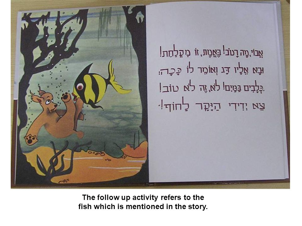 The follow up activity refers to the fish which is mentioned in the story.