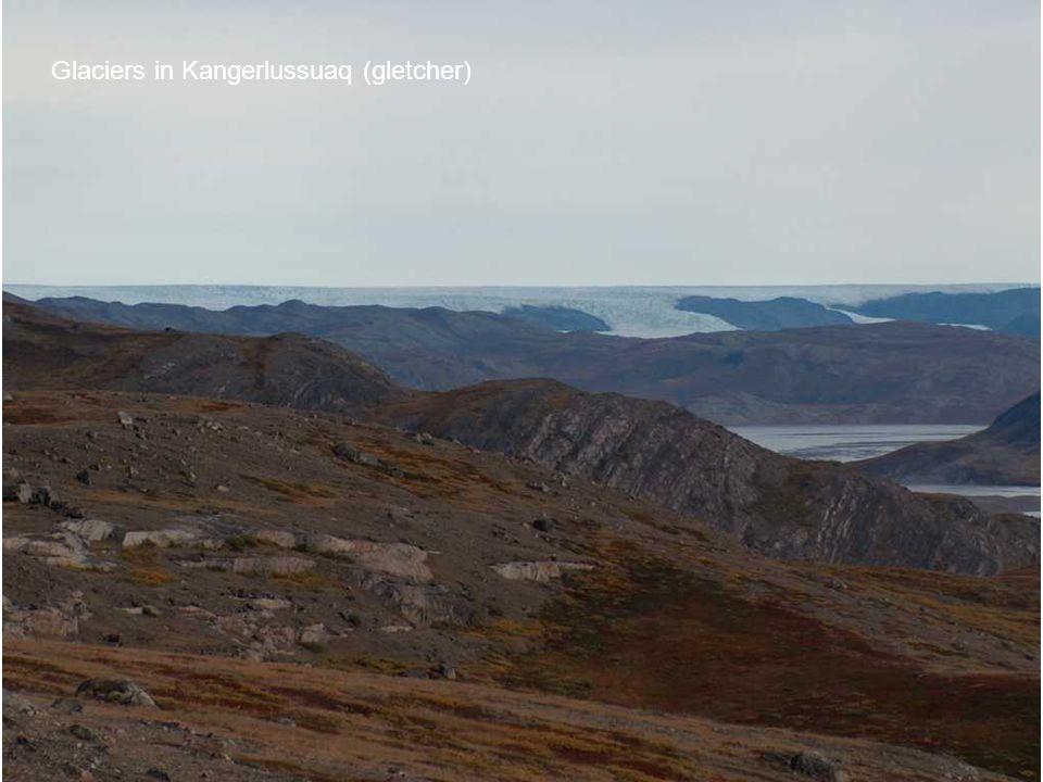 Glaciers in Kangerlussuaq (gletcher)