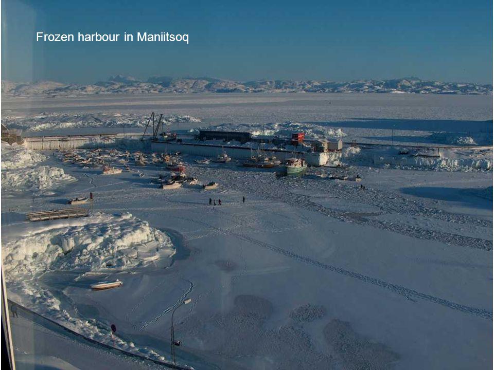 Frozen harbour in Maniitsoq
