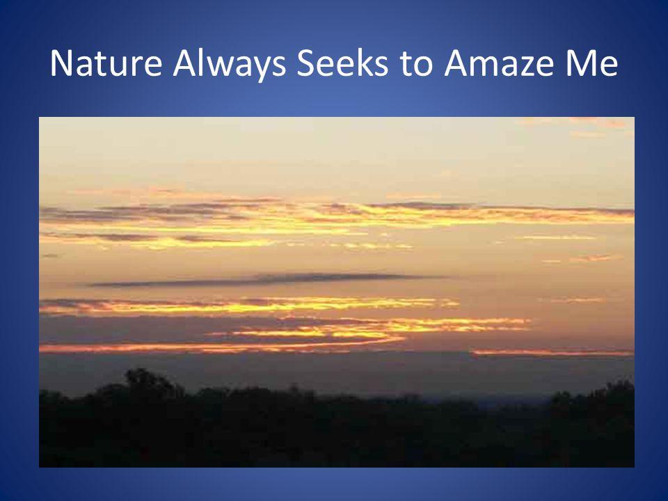 Nature Always Seeks to Amaze Me