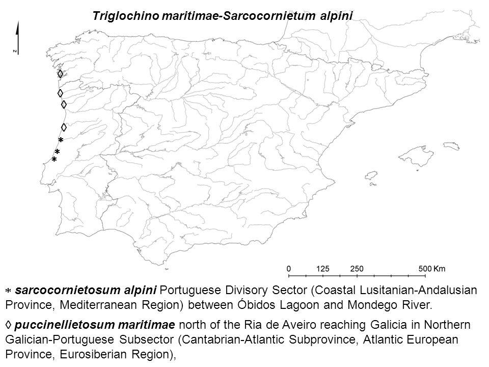         sarcocornietosum alpini Portuguese Divisory Sector (Coastal Lusitanian-Andalusian Province, Mediterranean Region) between Óbidos Lagoon and Mondego River.