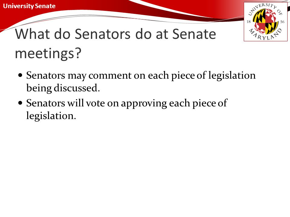 University Senate What do Senators do at Senate meetings.