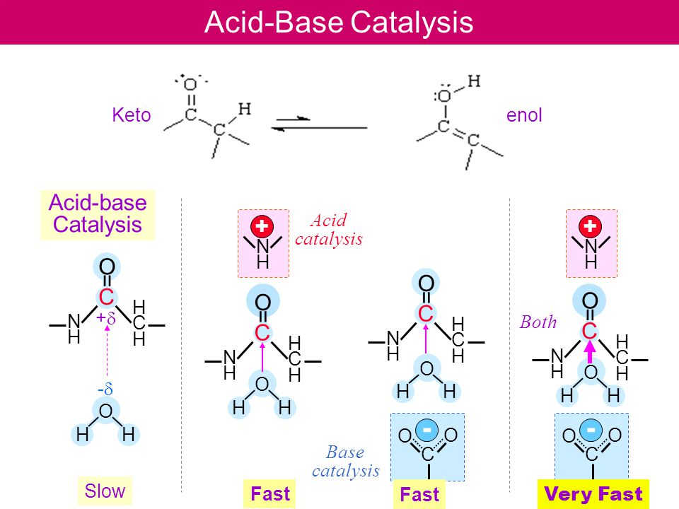 H O H Acid-Base Catalysis C O = NHNH HCHHCH NHNH + C - O O H O H -d-d +d+d H O H C O = NHNH HCHHCH C O = NHNH HCHHCH C O = NHNH HCHHCH Acid-base Catalysis Acid catalysis Base catalysis Both NHNH + C - O O H O H Ketoenol Slow Fast Very Fast