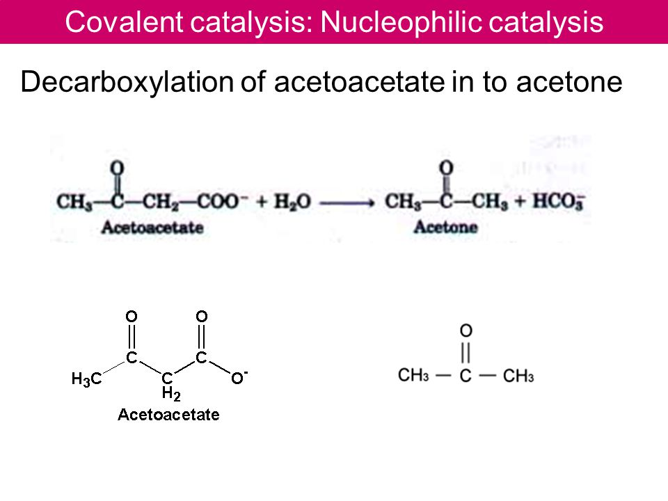 Covalent catalysis: Nucleophilic catalysis Decarboxylation of acetoacetate in to acetone