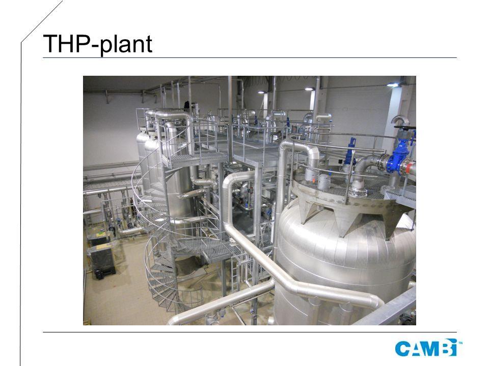 THP-plant