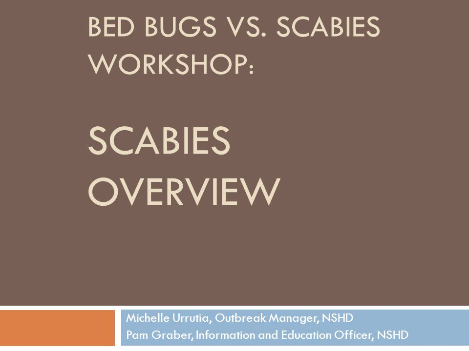 BED BUGS VS. SCABIES WORKSHOP : SCABIES OVERVIEW Michelle Urrutia, Outbreak Manager, NSHD Pam Graber, Information and Education Officer, NSHD