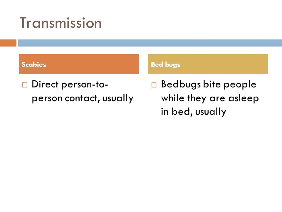 Transmission  Direct person-to- person contact, usually  Bedbugs bite people while they are asleep in bed, usually ScabiesBed bugs