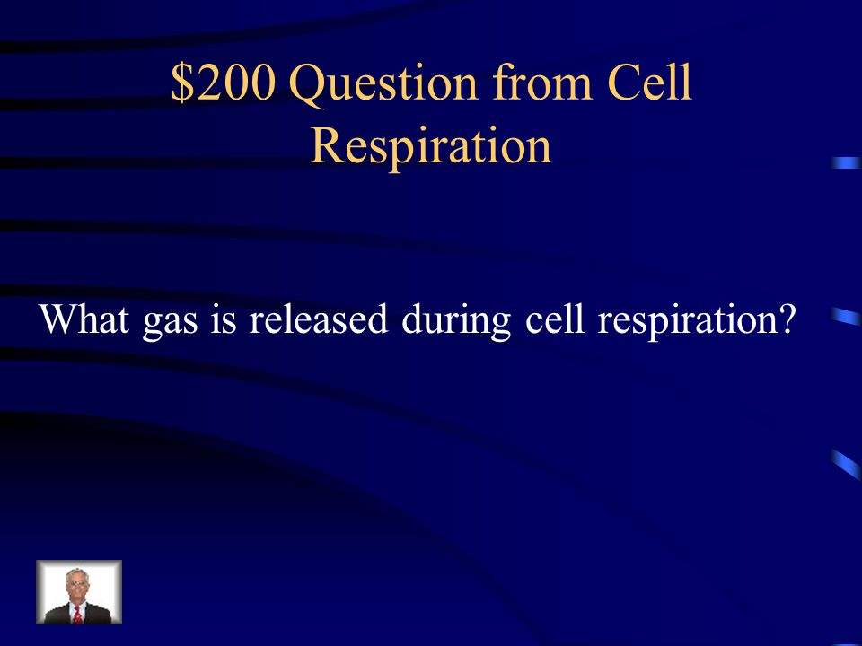 $100 Answer from Cell Respiration Heterotrophs
