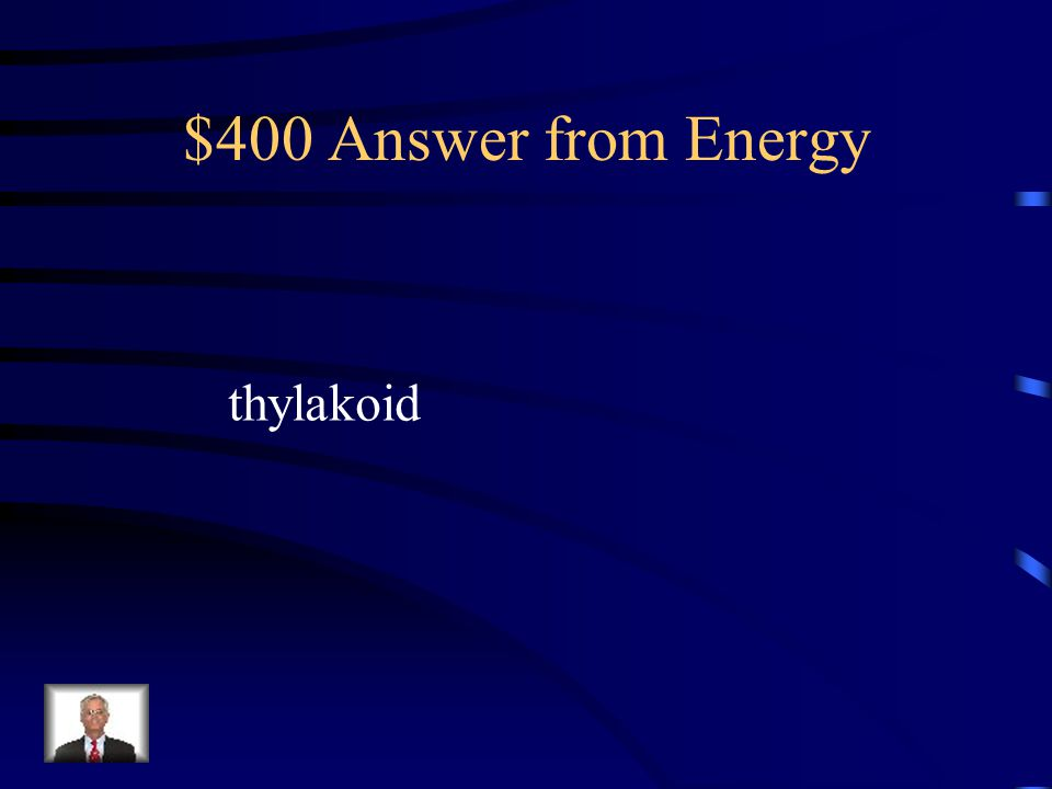 $400 Question from Energy Which part of the chloroplast is light used to split water?
