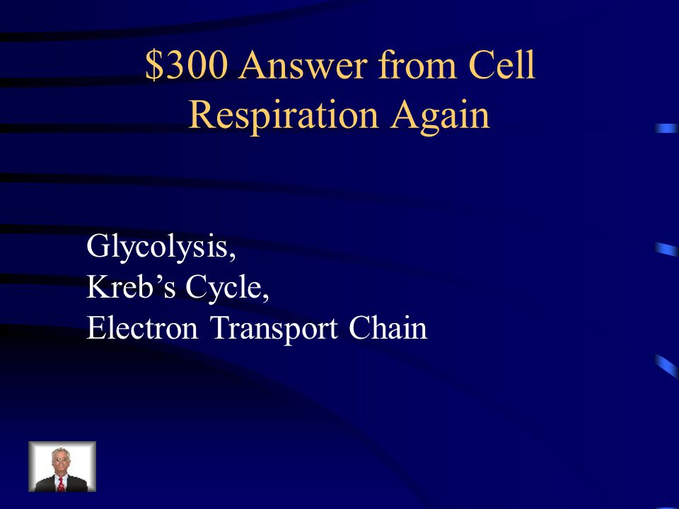 $300 Question from Cell Respiration Again What are the three processes of cell respiration, in order?