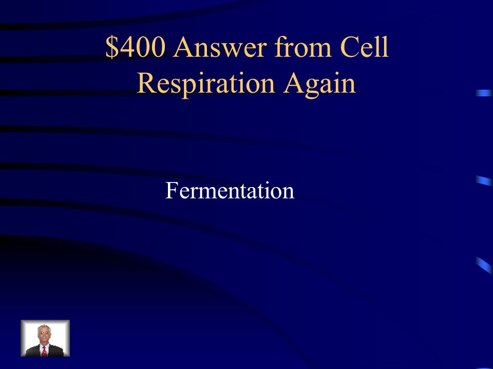 $400 Question from Cell Respiration Again Without Oxygen, the Kreb's Cycle cannot function. Which process will occur instead?