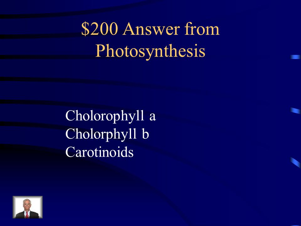 $200 Question from Photosynthesis What are the light absorbing molecules used by plants?