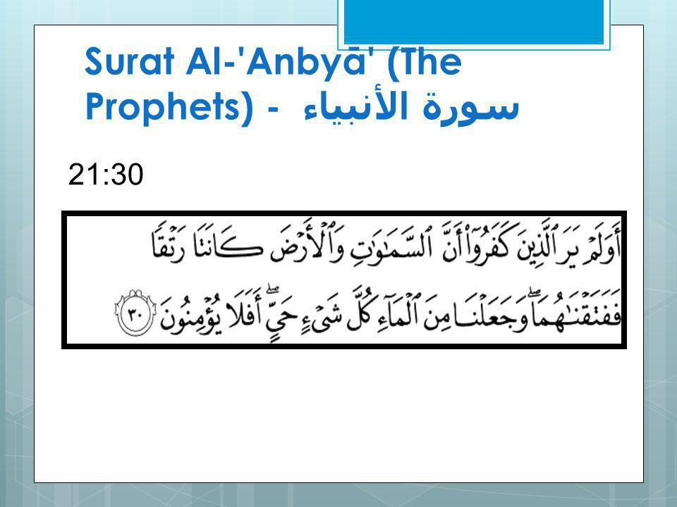 Surat Al- Anbyā (The Prophets) - سورة الأنبياء 21:30