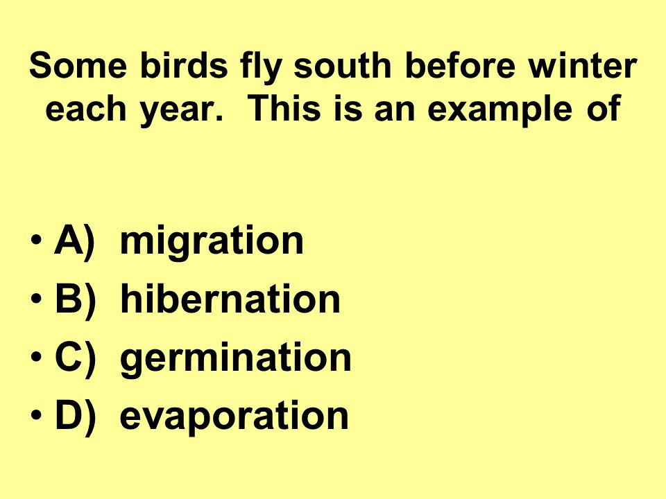 Some birds fly south before winter each year.