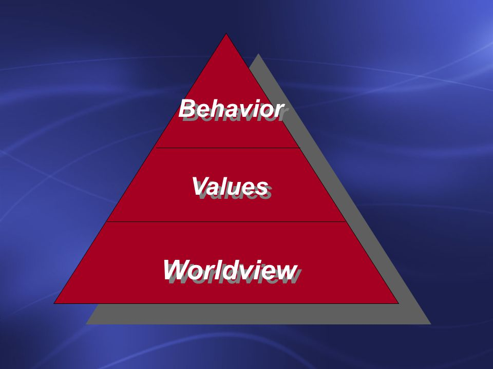 Worldview Values Behavior