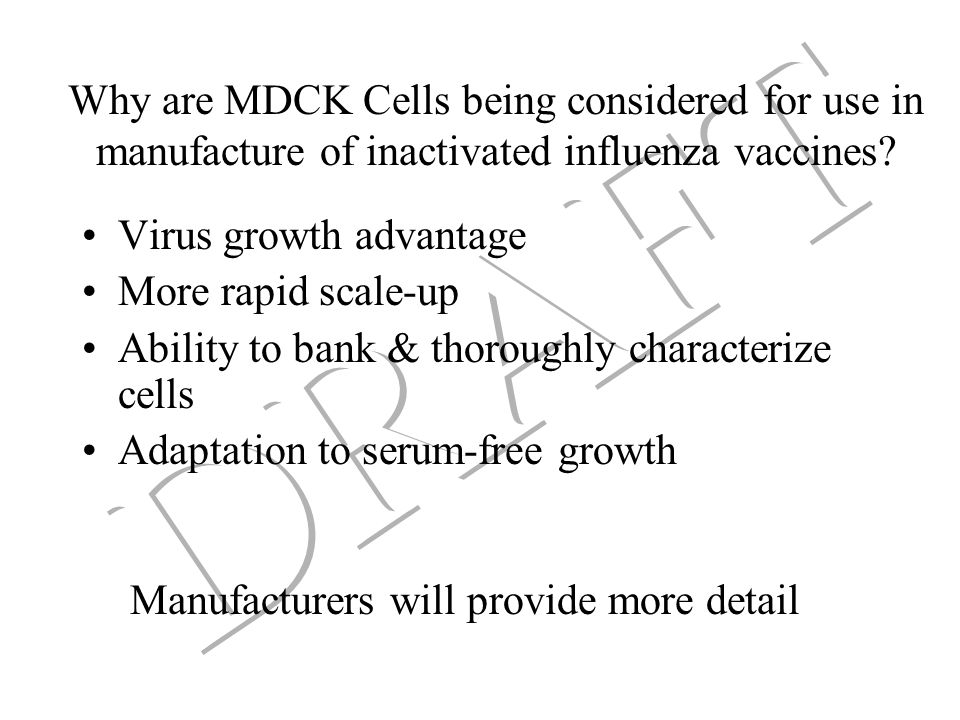 1999 meeting: Scientific conclusions Multi-factor nature of carcinogenesis suggests very low risk of oncogenicity from cellular components other than oncogenic viruses Unrecognized adventitious agents may be the major concern with neoplastic cell substrates –Primary cells present greater risks for adventitious agents than neoplastic cells Risks from residual DNA were perceived to be low, although there is a need for more scientific data to verify this perception Virus cell interactions: –Risk must be considered based on specific virus/cell substrate combinations, and any selective pressures in the cell culture system Concern was raised that neoplastic cells could contain abnormal PrP genes, of unclear significance Designing cell substrates using defined mechanisms of transformation should be considered