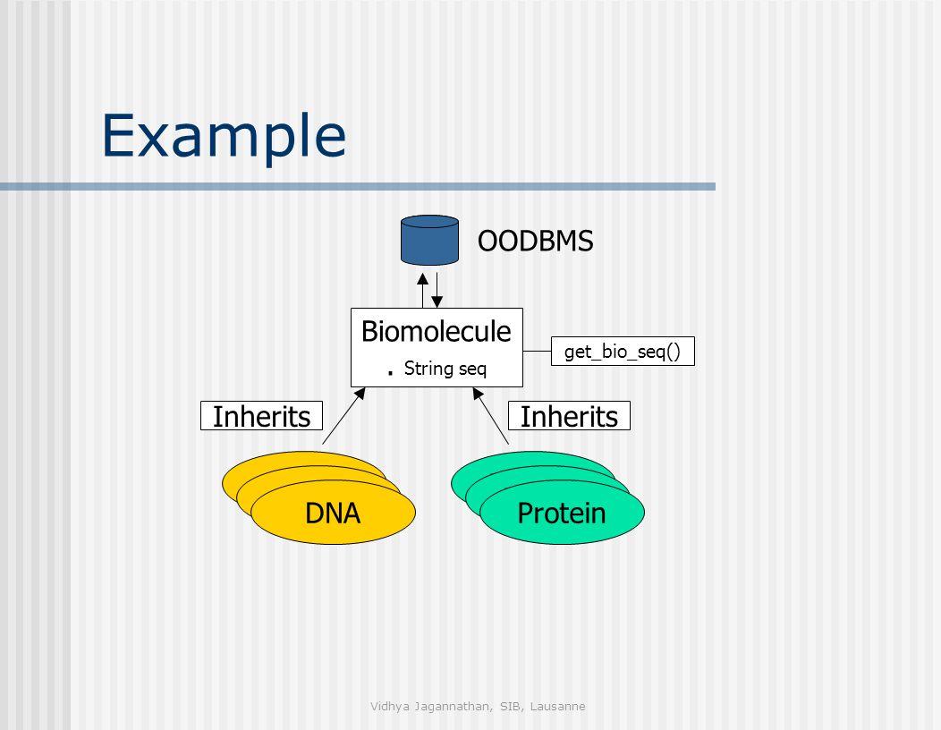Vidhya Jagannathan, SIB, Lausanne Example DNAProtein Inherits Protein DNA get_bio_seq() Biomolecule.