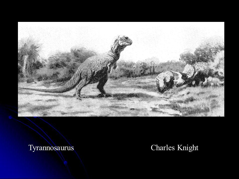Tyrannosaurus Charles Knight