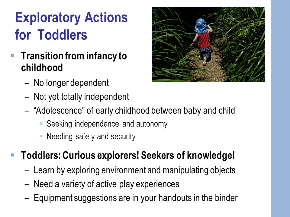 Exploratory Actions for Toddlers  Transition from infancy to childhood –No longer dependent –Not yet totally independent – Adolescence of early childhood between baby and child  Seeking independence and autonomy  Needing safety and security  Toddlers: Curious explorers.