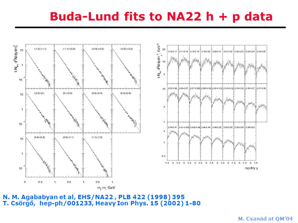 M. Csanád at QM'04 Buda-Lund fits to NA22 h + p data N.