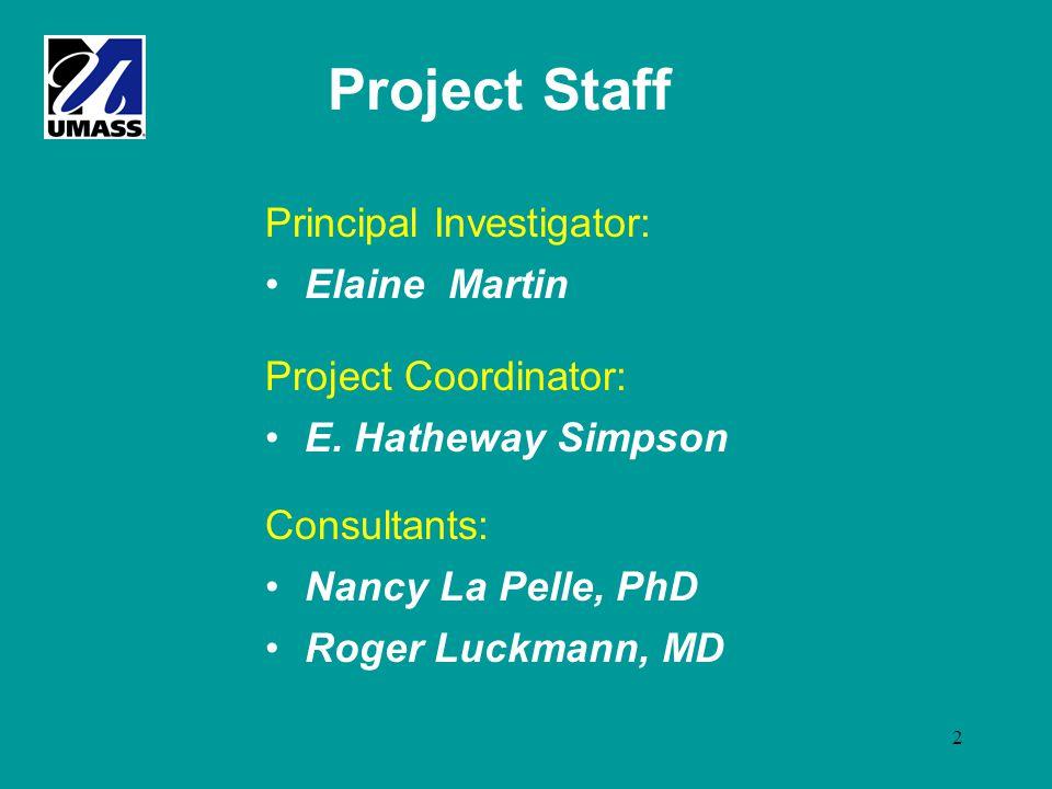 2 Project Staff Principal Investigator: Elaine Martin Project Coordinator: E.