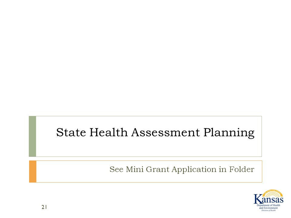 State Health Assessment Planning See Mini Grant Application in Folder 21