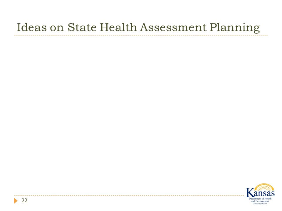 Ideas on State Health Assessment Planning 22