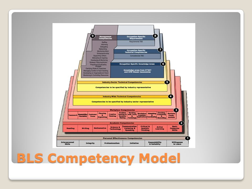 BLS Competency Model