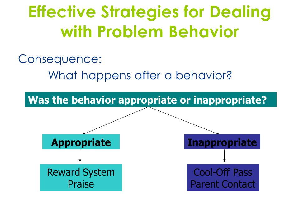 4 Traditional Strategies Used for Dealing with Problem Behavior Time out Demerit or fine Detention Writing assignment Deprivation of some reward