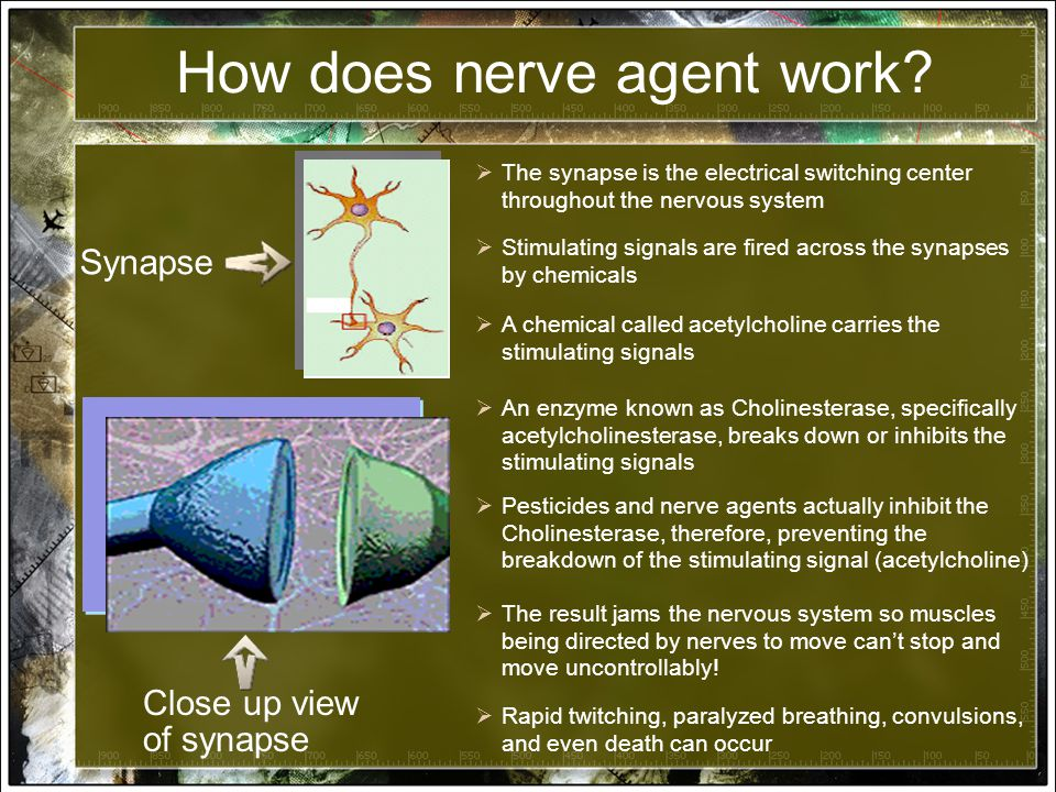 How does nerve agent work.